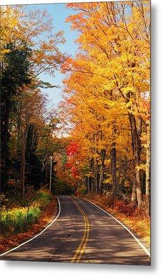 Autumn Country Road Metal Print by Joann Vitali