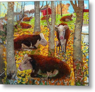 Autumn Cows Metal Print