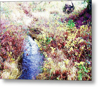 Metal Print featuring the photograph Autumn Creek by Vanessa Palomino