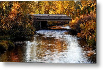 Metal Print featuring the photograph Autumn Crossing by Jan Davies