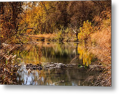 Metal Print featuring the photograph Autumn Day by John Johnson