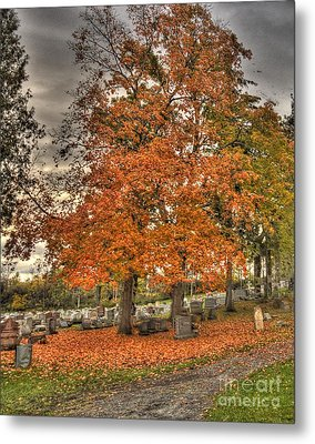 Metal Print featuring the photograph Autumn Delight by Jim Lepard