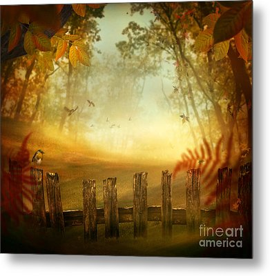 Autumn Design - Forest With Wood Fence Metal Print by Mythja  Photography