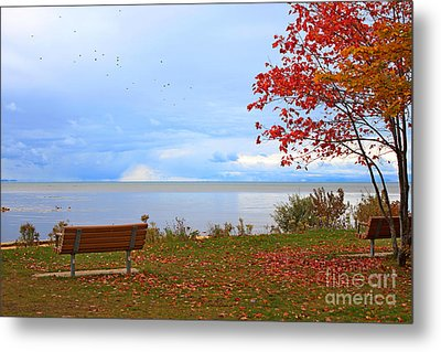 Autumn Metal Print by Dipali S