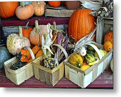 Autumn Display Metal Print by Frozen in Time Fine Art Photography
