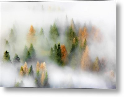 Autumn Dream Metal Print by Kristjan Rems