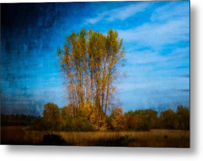 Autumn Dream Metal Print
