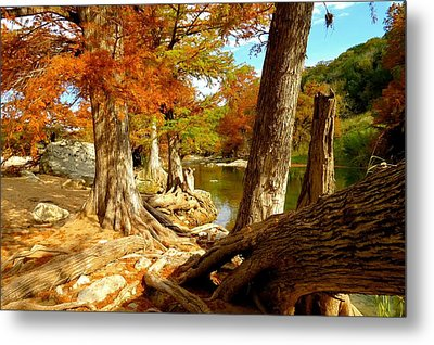 Metal Print featuring the photograph Autumn Dreams by David  Norman