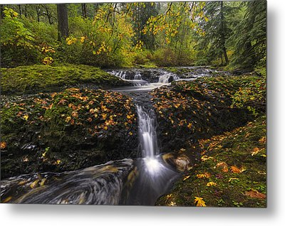 Autumn Euphoria  Metal Print by Mark Kiver