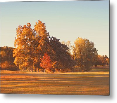 Autumn Evening On The Golf Course Metal Print by Ann Powell