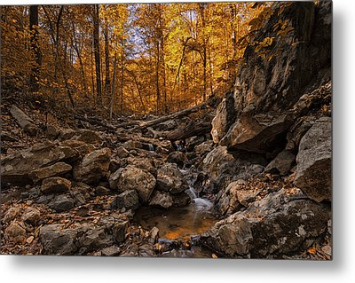 Autumn Falls Metal Print by Edward Kreis