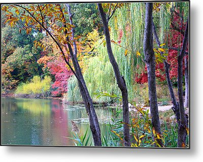 Autumn Fantasy Metal Print by Dora Sofia Caputo Photographic Art and Design
