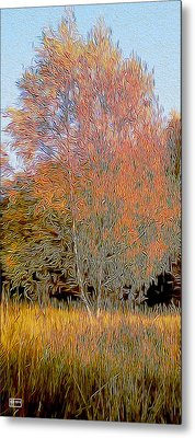 Autumn Fires Metal Print by Jim Pavelle