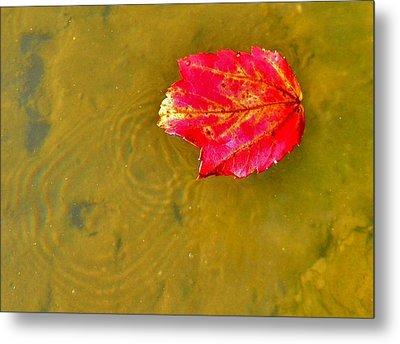 Autumn Floats Metal Print