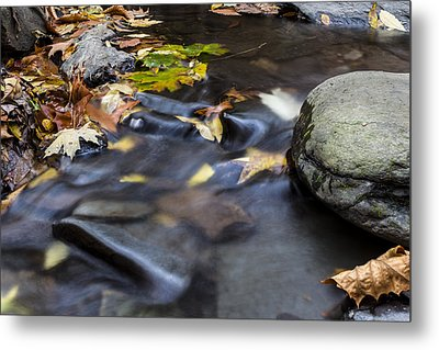 Autumn Flow Metal Print by Andrew Pacheco