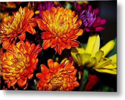Metal Print featuring the digital art Autumn Flowers by Linda Segerson