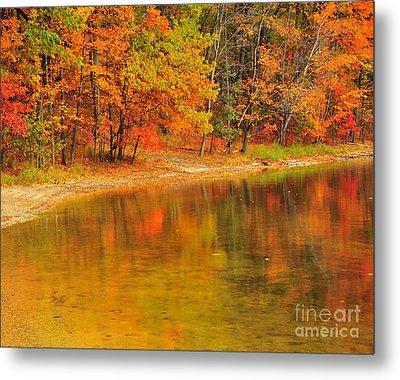 Autumn Forest Reflection Metal Print