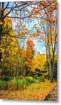 Autumn Garden- Paint Metal Print by Steve Harrington