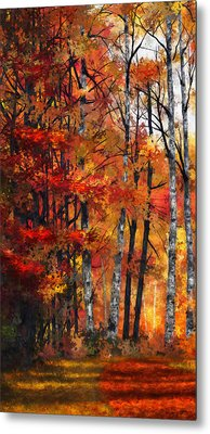 Autumn Glory I Metal Print by Dale Jackson