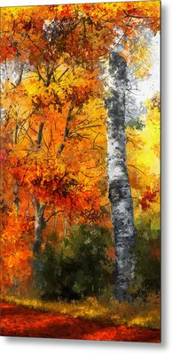 Autumn Glory II Metal Print by Dale Jackson