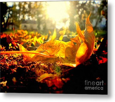Autumn Glory Metal Print by Janine Riley