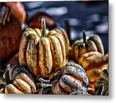 Autumn Glow Metal Print by Caitlyn  Grasso