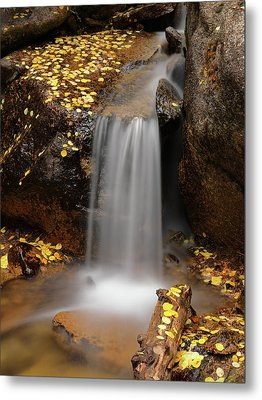 Autumn Gold And Waterfall Metal Print by Leland D Howard