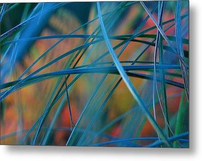 Autumn Grass Metal Print by Rebeka Dove