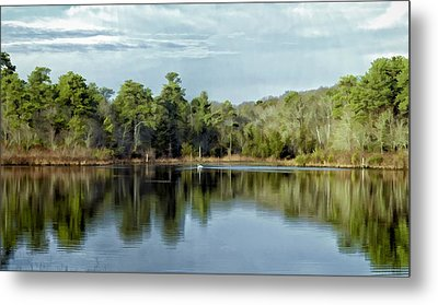 Metal Print featuring the photograph Autumn Green Photo Art by Constantine Gregory