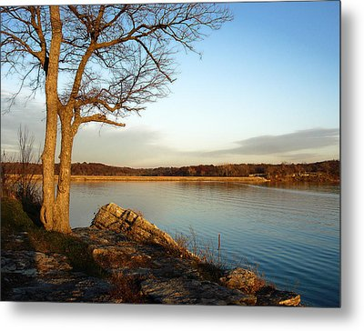 Autumn Guardian Of The Lake Metal Print by Ellen Tully