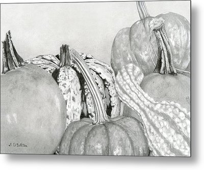 Autumn Harvest Metal Print by Sarah Batalka