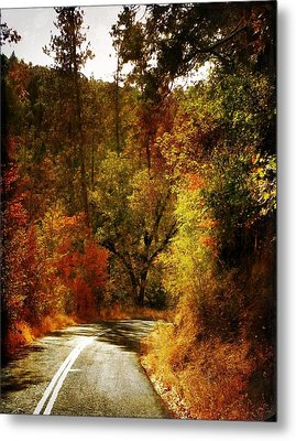Autumn Highway Metal Print by Leah Moore