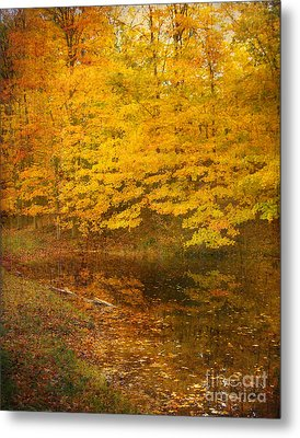 Metal Print featuring the photograph Autumn Impressions by Kathi Mirto