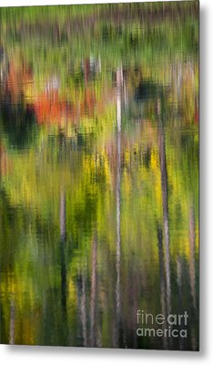 Autumn Impressions Metal Print by Mike  Dawson