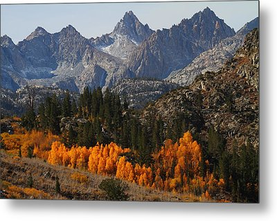 Autumn In Bishop Canyon In The Eastern Sierras Metal Print by Jetson Nguyen