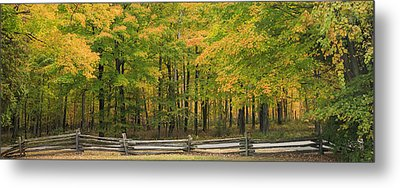 Autumn In Door County Metal Print by Adam Romanowicz