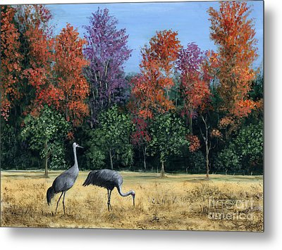 Autumn In Florida Metal Print by Marilyn Dunlap