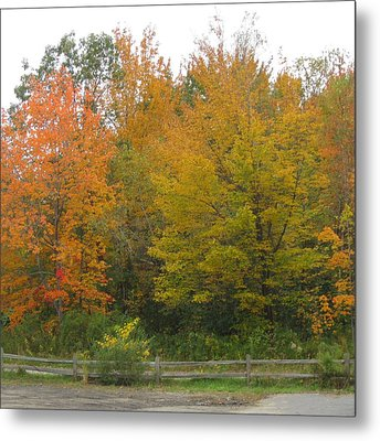 Autumn In Maine Metal Print by Patricia E Sundik