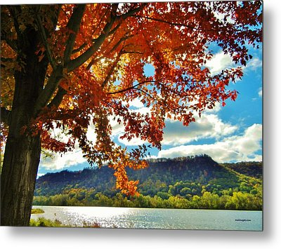 Autumn In Minnesota Metal Print