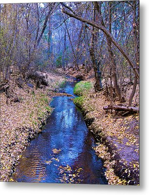 Metal Print featuring the photograph Autumn In New Mexico by John Babis