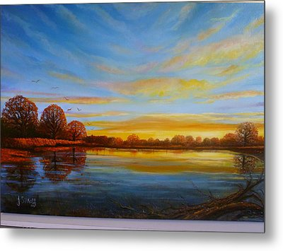Autumn In Richmond Park. Metal Print by Janet Silkoff