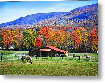 Autumn In Rural Virginia  Metal Print