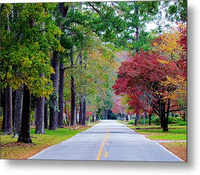 Autumn In The Air Metal Print by Cynthia Guinn