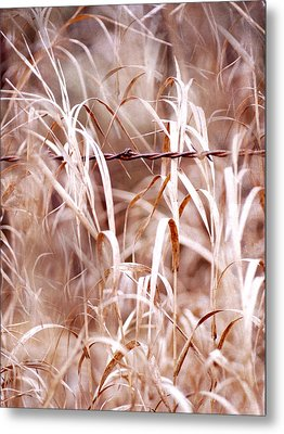 Autumn In The Country Metal Print by Angie Rea