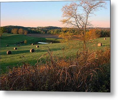 Autumn In The Country Metal Print by Ellen Tully