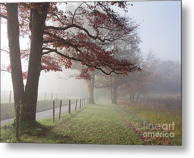 Autumn In The Cove IIi Metal Print