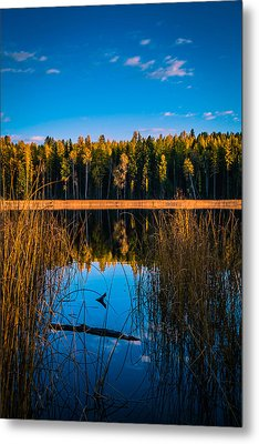 Metal Print featuring the photograph Autumn In The Kootenays by Rob Tullis