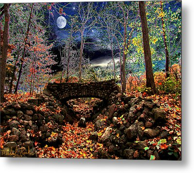 Autumn In The Meadow Metal Print by Michael Rucker