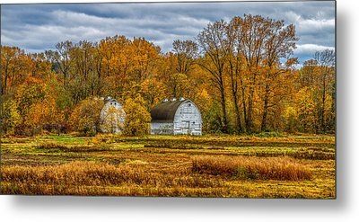 Autumn In The Meadows Metal Print
