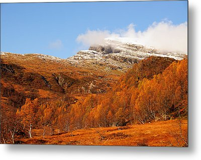 Autumn In The Mountains Metal Print by Gry Thunes